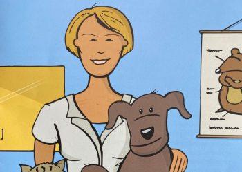Tipps für einen entspannten Tierarztbesuch