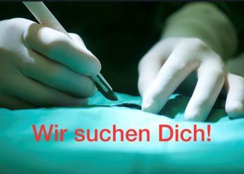 Tiermedizinische/r Fachangestellte/r (m/w/d), Schwerpunkt OP-Assistenz